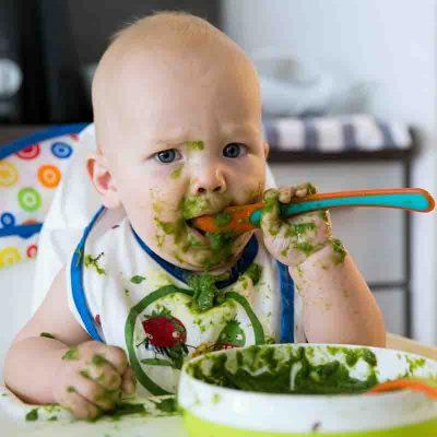 نوزاد گیاهخوار پرورش دهیم!